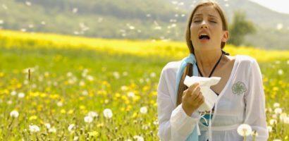 hay-fever last sneezing
